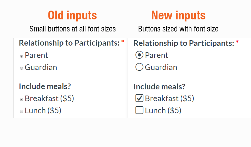 Formsite new input styles