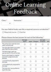 Online Learning Feedback Form