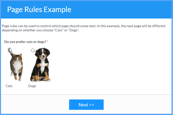 Page Rules Example Templates