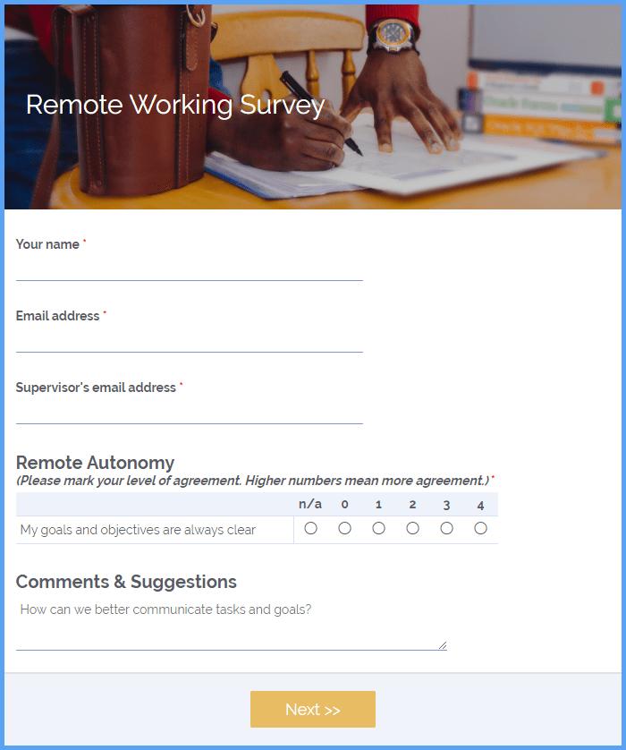 Remote Working Surveys