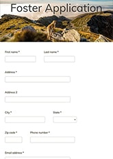 Foster Application Form